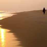Орисса, бесконечные песчаные пляжи Бенгальского залива (c)inditrip.net