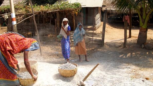 Деревня койна в округе Раягада. Орисса, Индия (c)inditrip.net