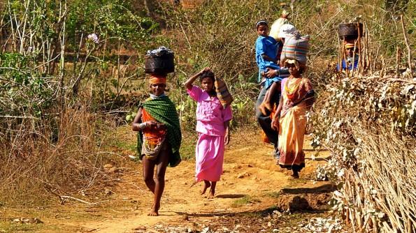 Женщины адиваси племени бонда и койна. Округ Малкангири. Индия, Орисса (c)inditrip.net