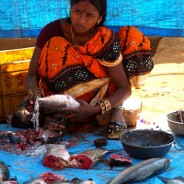 Fish market at Kunduli Friday haat. Orissa. India (c)inditrip.net