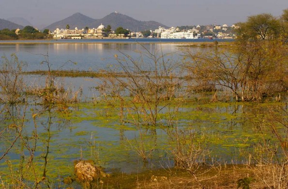 Trip around Pichola Lake in Udaipur (c)inditrip.net